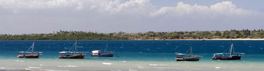 Wasini Island Pictures One Day Wasini Island